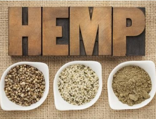 Best Ways To Eat Hemp Seeds